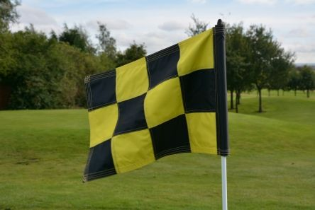 2Ply Sewn Chequered Flags