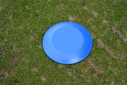 blue low profile plastic tee marker