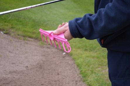 fairway products pink mini rake