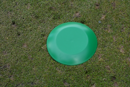 green low profile plastic tee marker