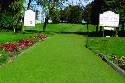 pathway artificial grass