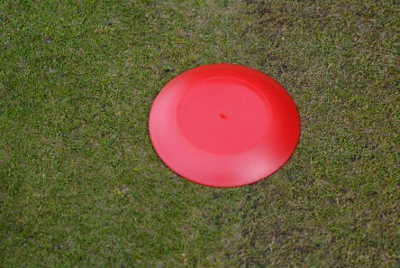 red low profile plastic tee marker