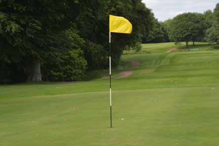 Standard Flag Pin Golf Flag Pins Hole Placement Markers