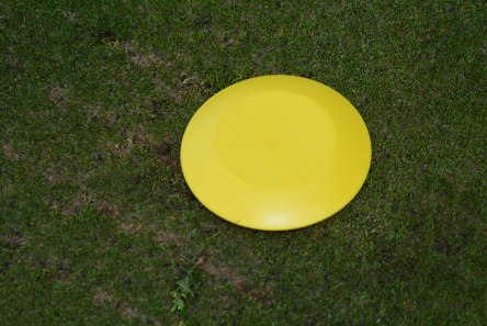 yellow low profile plastic tee marker