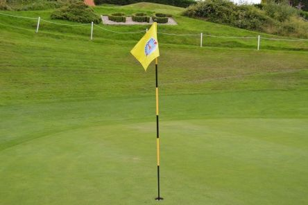 yellow tubelock embroidered golf flag